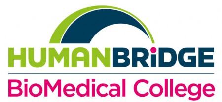 Human Bridge Årsberättelse 2015